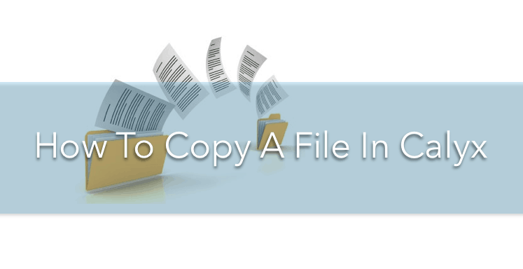 How to copy a file in Calyx and only get the 1003 Data